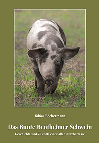 Das Bunte Bentheimer Schwein